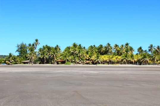 Playa Cuco Dec 2015 055