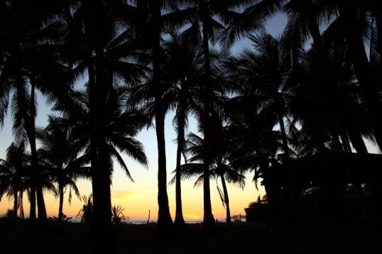 Playa Cuco Dec 2015 178