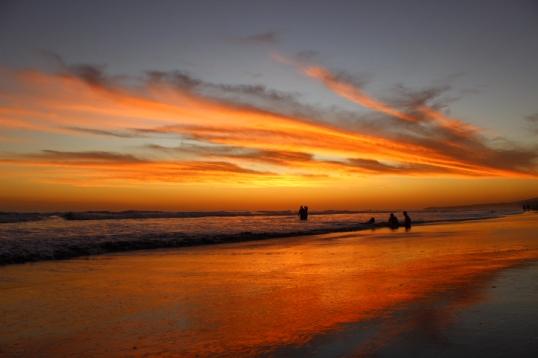 Playa Cuco Dec 2015 363