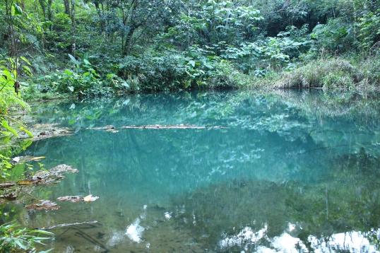 Lago Yojoa Jan2015 034